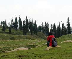 Travel To Sonamarg