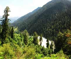 Sonamarg Tourism Honeymoon