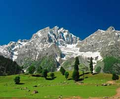 Holiday Package Sonamarg