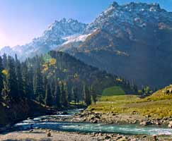 Sonamarg Honeymoon